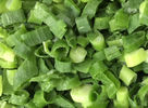 High Grade IQF Frozen Vegetables / Green Spring Onions For Eating